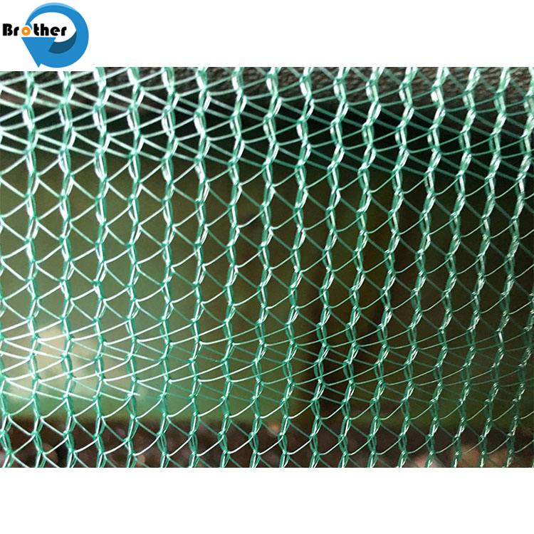 Manufacturer Agricultural Anti-Bird Net Easy Installation / Invisible Anti Bird Net / Garden Vineyard Plastic Bird Netting